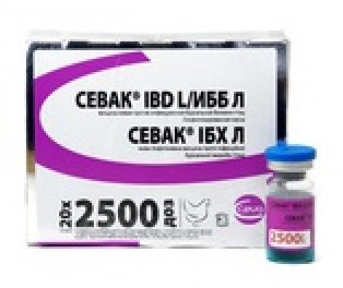 Севак IBD L